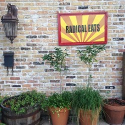 Radical Eats for Radically, Awesome Food!