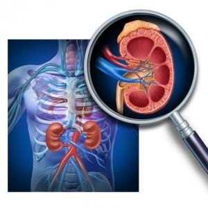 Sleep Apnea May Accelerate  Chronic Kidney Disease