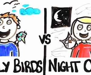 Early Birds vs. Night Owls, Who Wins?