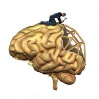 Brain Damage Caused By Severe Sleep Apnea Can Be Reversed