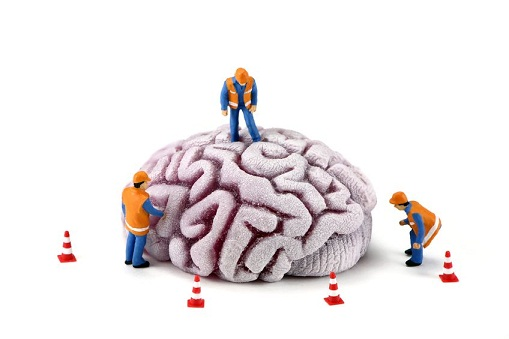 Study: Protect Your Brain Tissue With Sleep