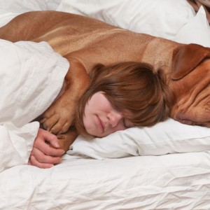 How to Sleep Better With Your Furry Friend
