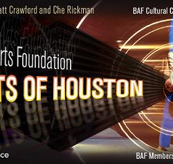 The Brazilian Arts Foundation Hosts Lights of Houston